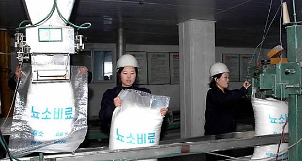 North Korea Surveys Population for Illiterates, Orders Reading Classes